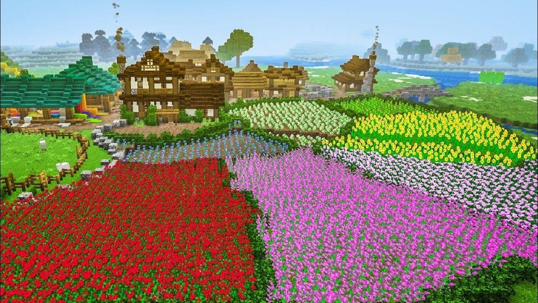 Jardin plein de fleurs multicolores.