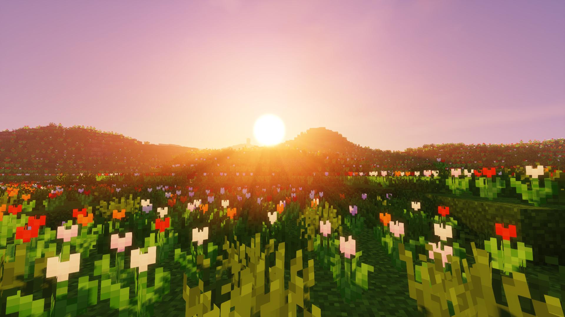 Profitez du magnifique coucher de soleil dans l'espace que vous avez créé.