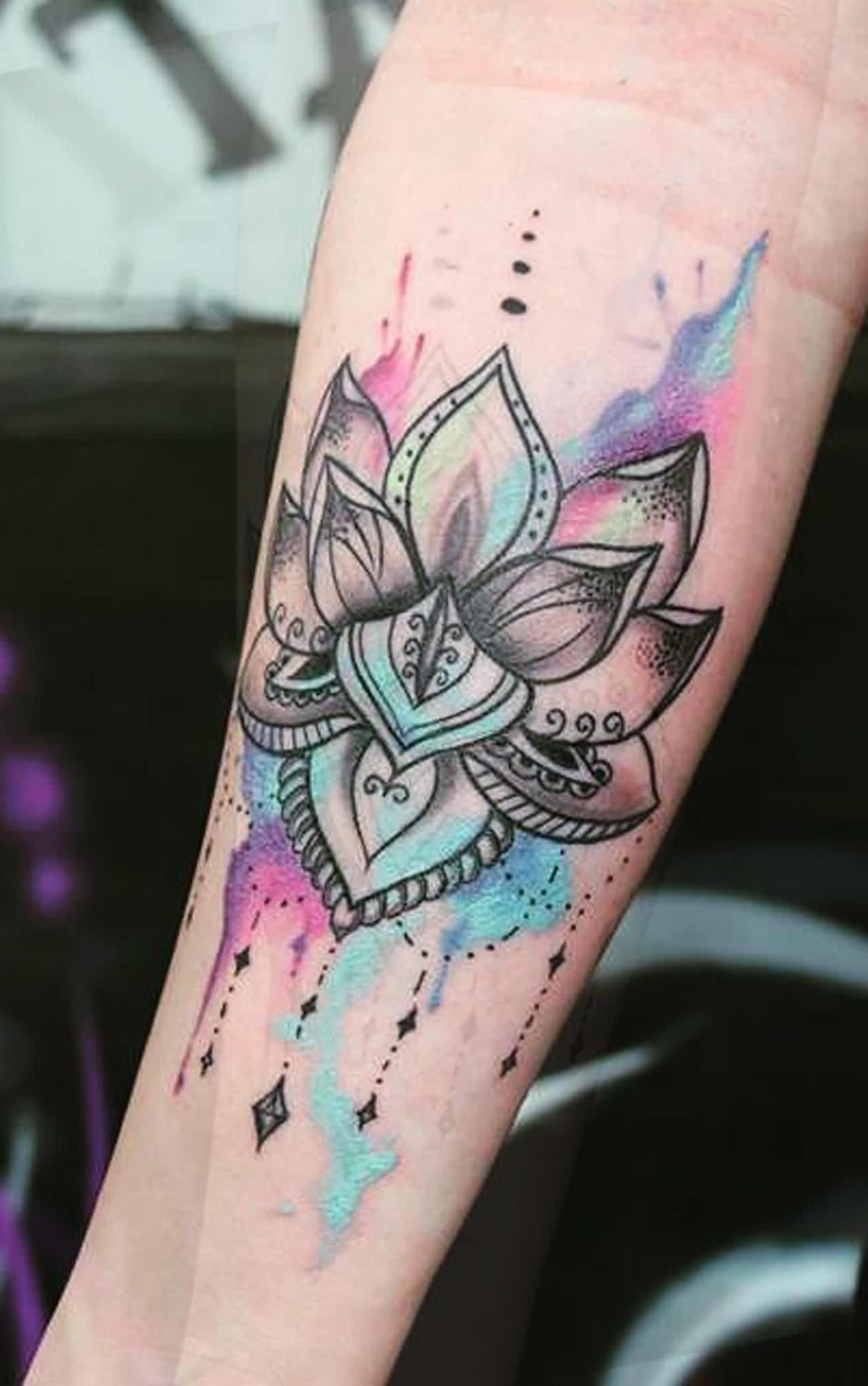 Lotus bicolore.