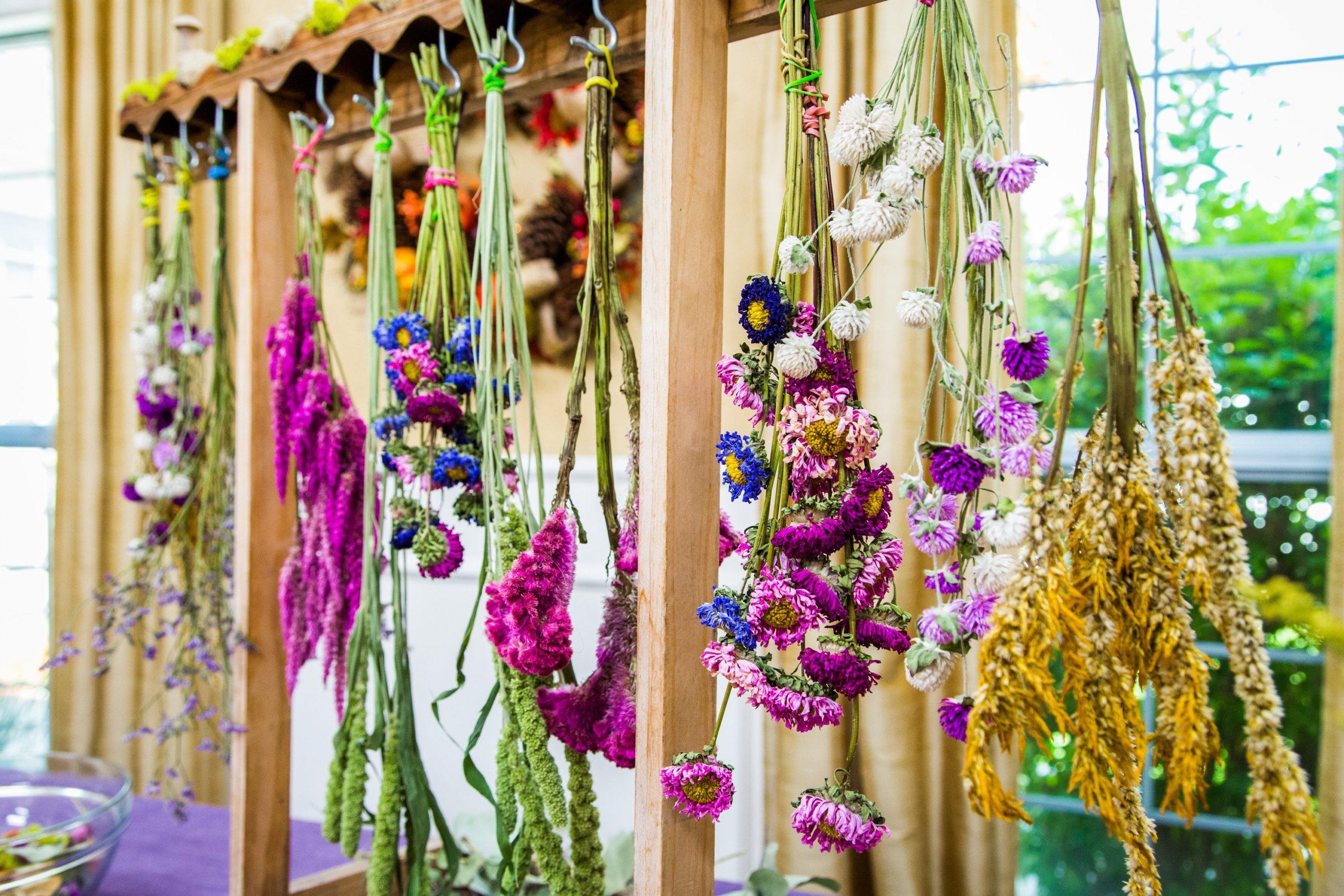 Faites une promenade dans la forêt et trouvez des fleurs sauvages que vous pouvez utiliser dans votre pot-pourri fait maison.