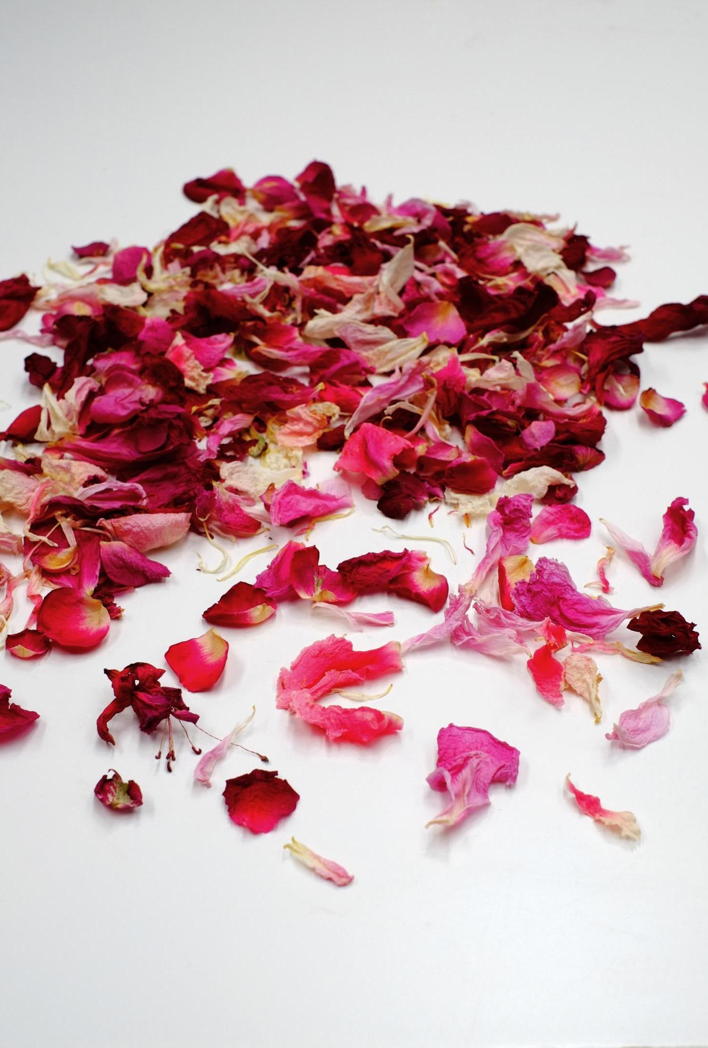 Pétales de rose séchés.