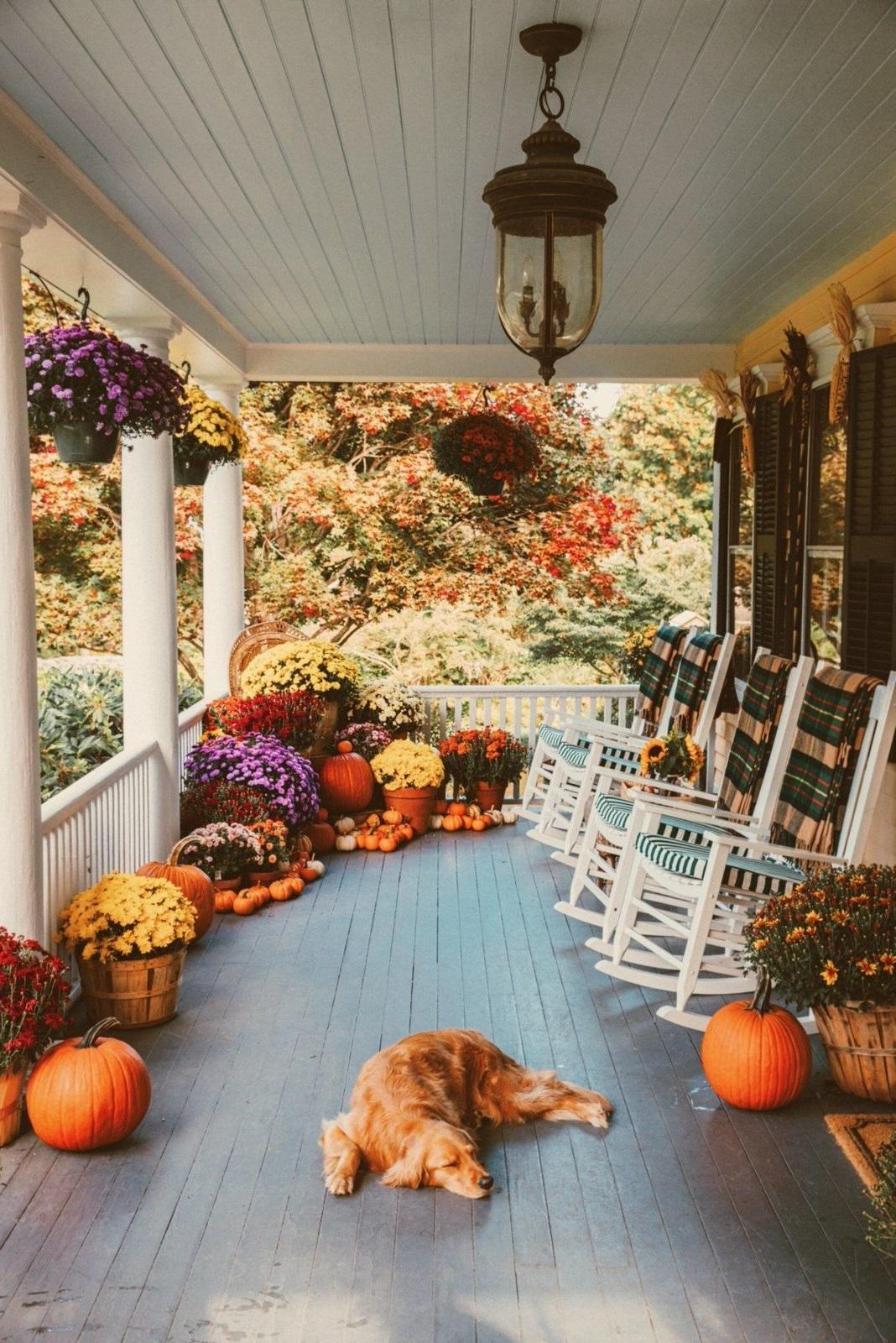 Idées de bricolage d'automne.
