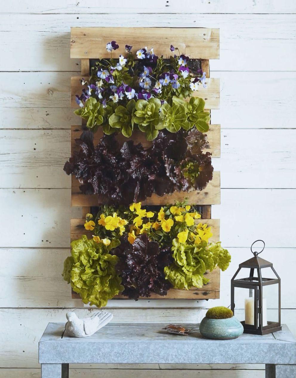 Projet bricolage pour votre jardin.