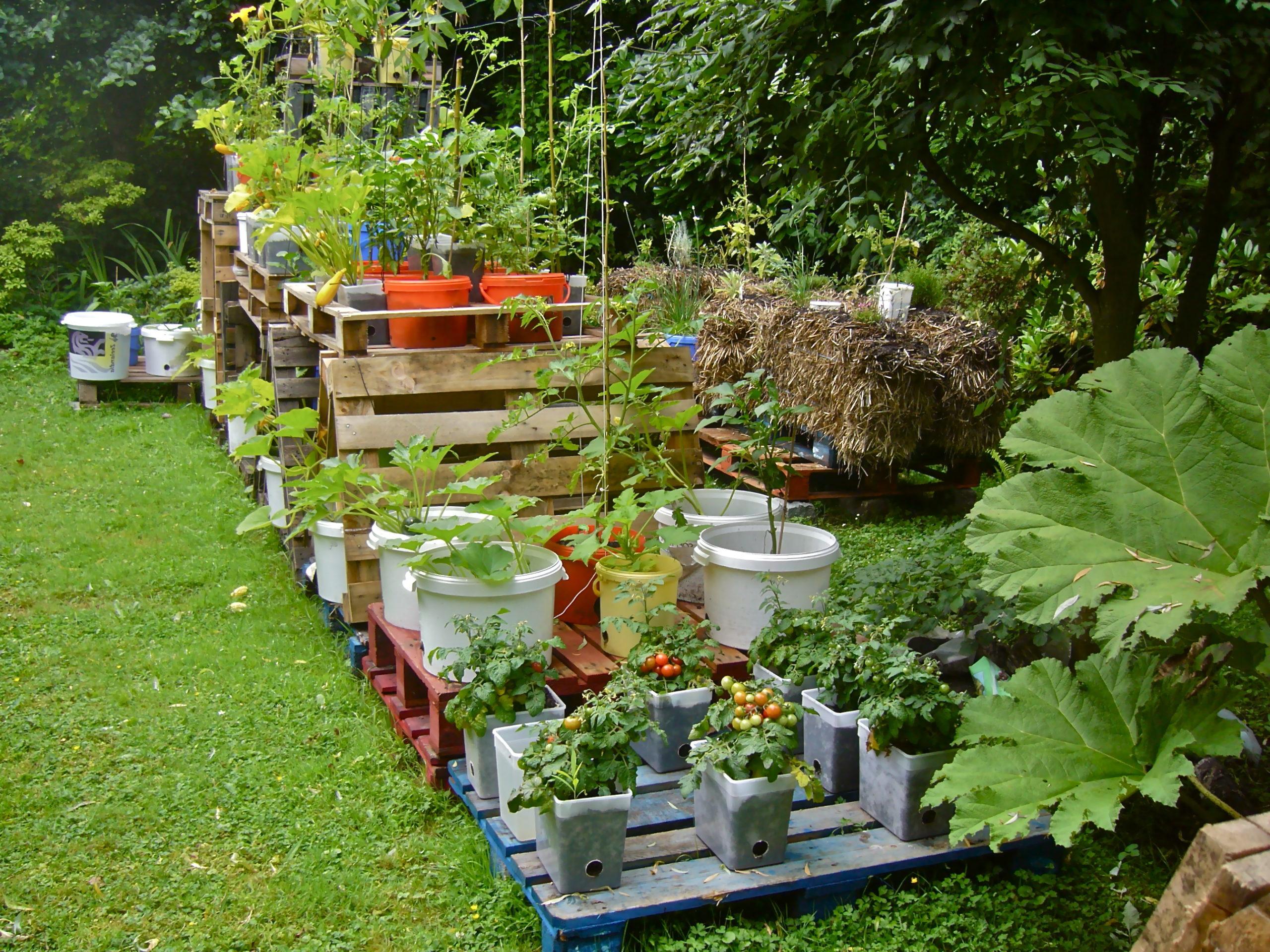 Jardinière ou potager en palette DIY.