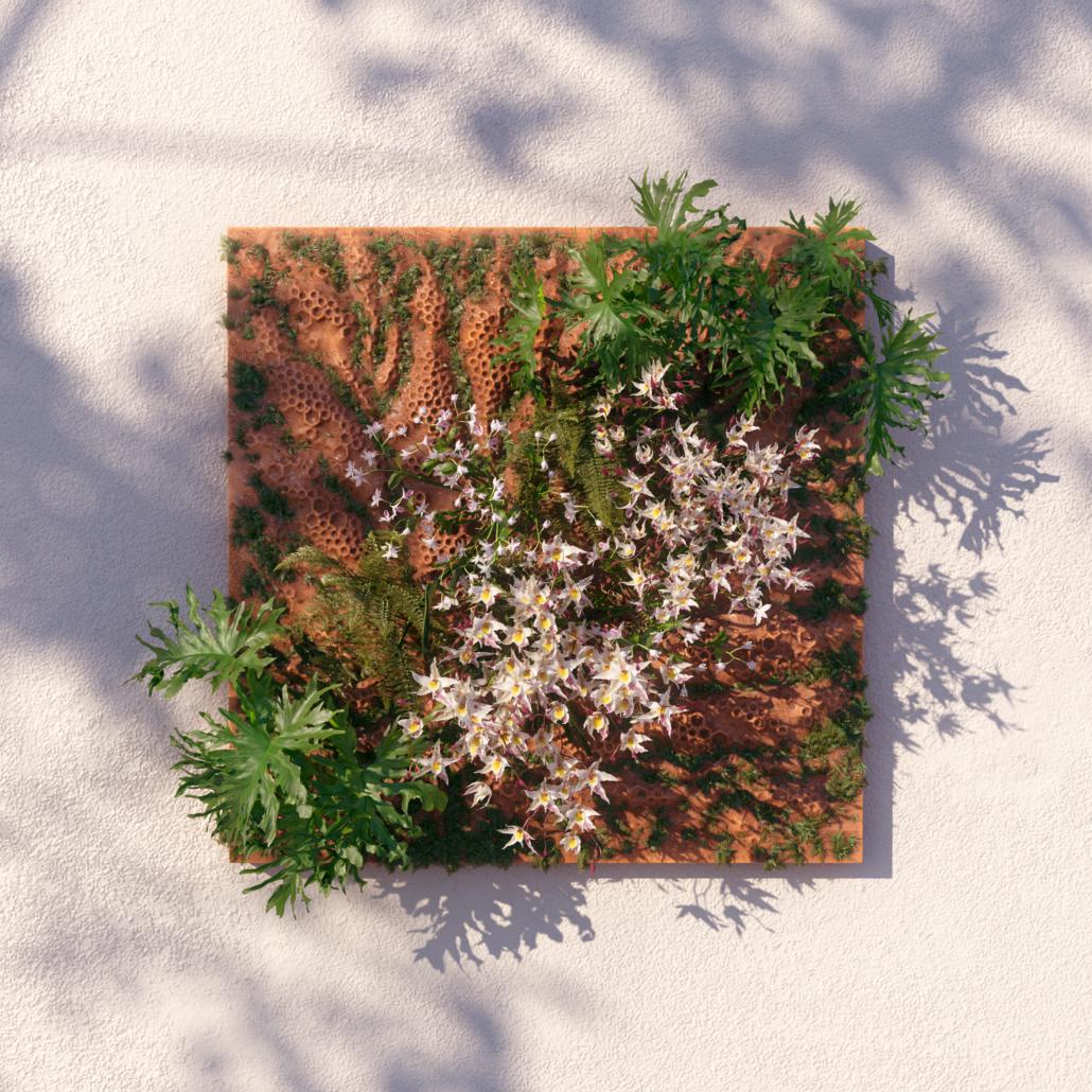 Mur végétal sur le balcon.