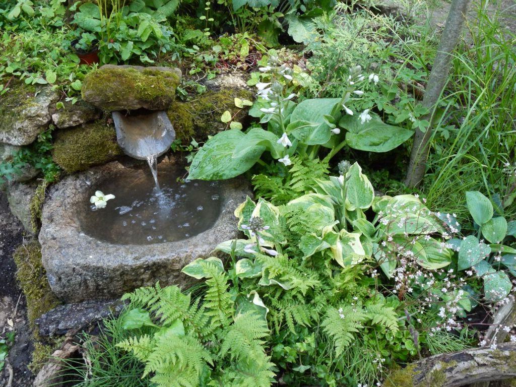 Petit bassin de jardin.