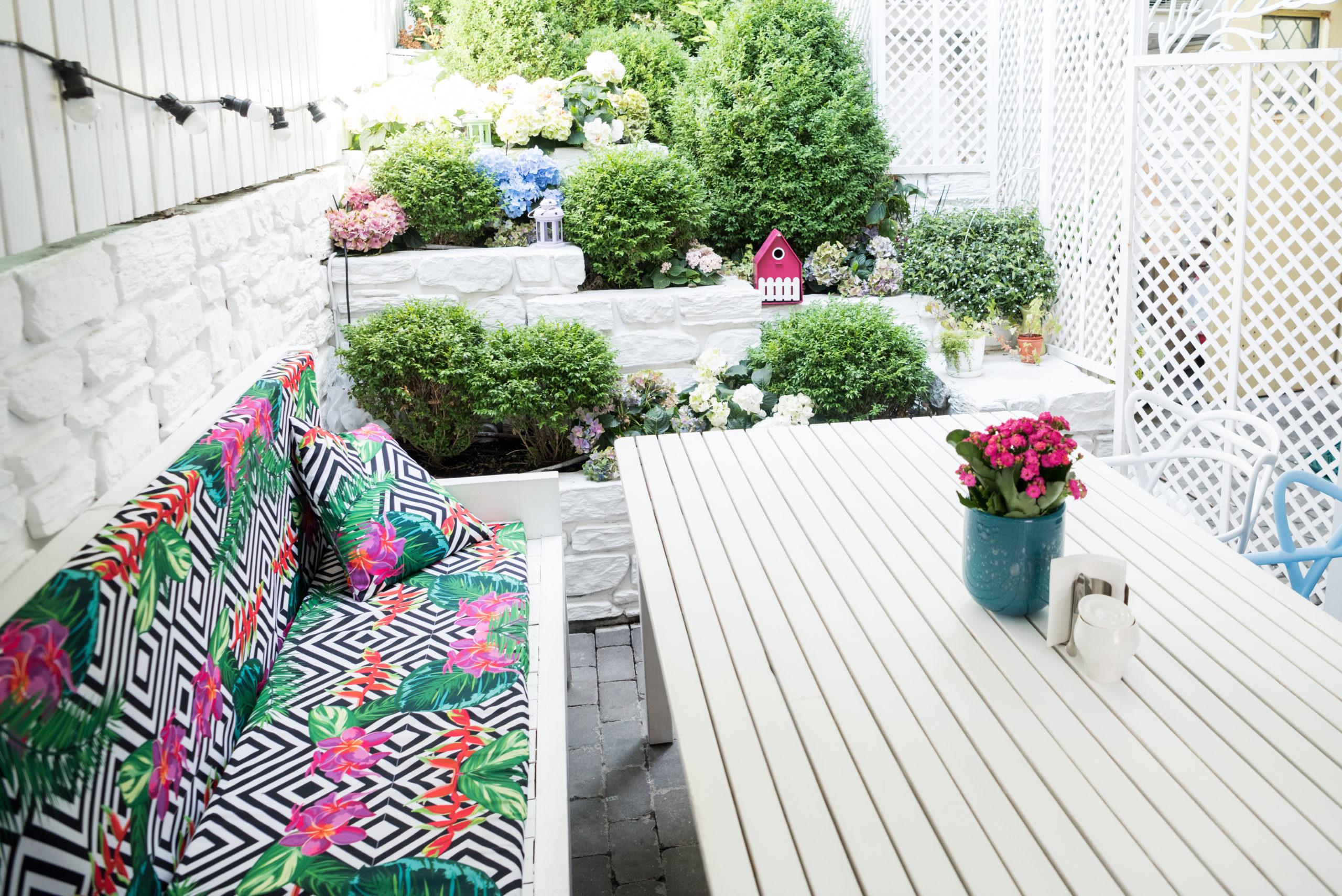 Embellir votre jardin avec des fleurs